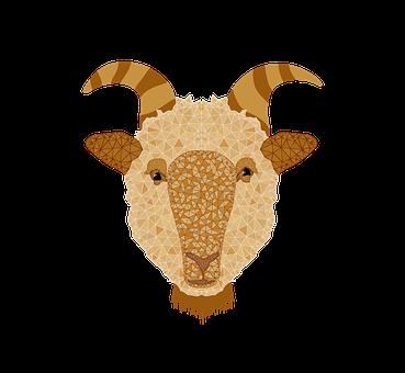 Sheep, Sacrifice, Lamb, Hajj, Animal, Religion, Mubarak