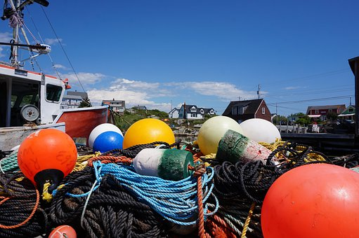 Buoys, Fishing, Buoy, Sea, Water, Fisherman, Rope
