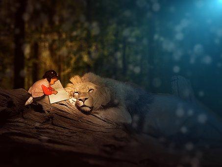 Girl, Book, Lion, Feline, Animal, King Of The Jungle