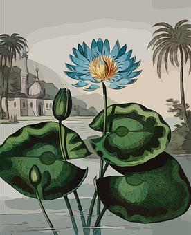 Flower, Blue, Plant, Blossom, Decorative, Tropical