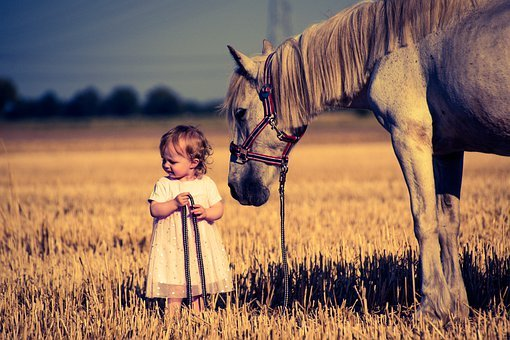 Horse, Pony, Mammal, Friendship, Mold, Girl, Child