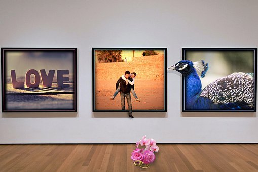 Romantic, Couple, Take, Rose, Frame, Photos, Love