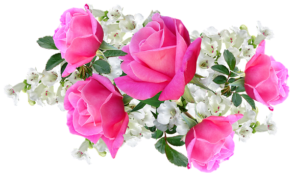 Flowers, Pink, Roses, White Penstemons, Arrangement