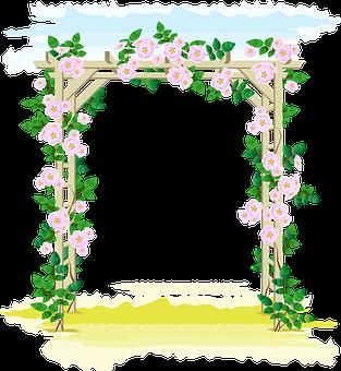Rose Roses, Pergola, Garden, Rambler, Garden Climber