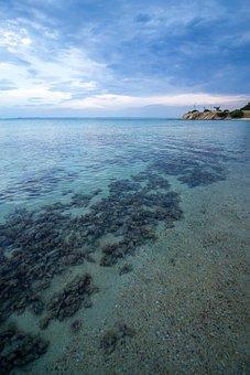 Sea, Mediterranean, Beach, Summer, Water, Ocean, Travel