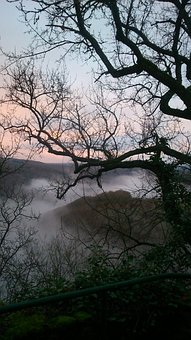 Trees, Fog, Branches, Mountains, Twilight, Valley
