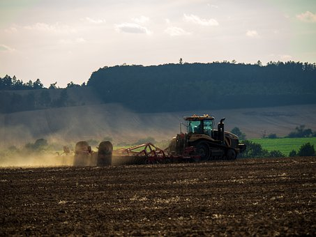 Agriculture, Field, Food, Nature, The Cultivation Of