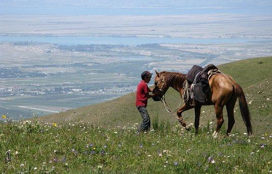 Karakol, Kyrgyzstan, Horse, Nature, Animal, Ride