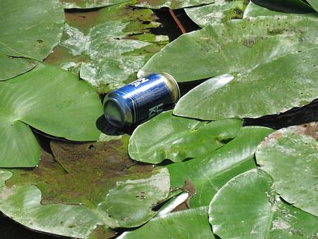 Dust, Beer Can, Water Lily, Water, Pollution