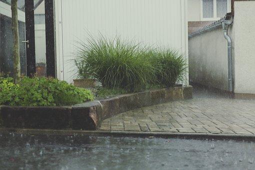 Rain, Drip, Water, Wet, Raindrop, Beaded, Window