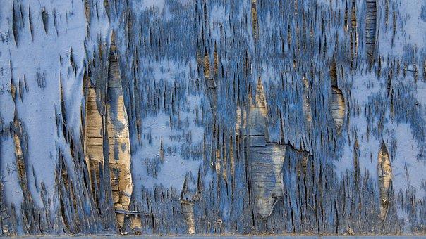 Texture, Background, Wood, Splintered, Weathered