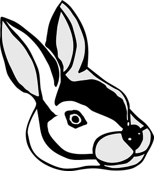 Rabbit, Long Eared, Ears, Animal, Nager, Drawing