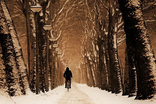 Road, Snow, Winter, Bicyclist, Silhouette, Bicycling