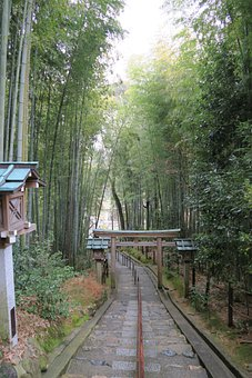 Alley, Stairs, Shrine, Bamboo, Japan