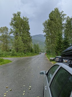 Trees, Road, Highway, Car, Vehiicle, Rural Road