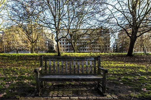 Bench, Trees, Leaves, Foliage, Park, City, Buildings