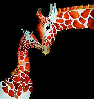 Giraffe, Motherhood, Mother And Child, Animals, Africa