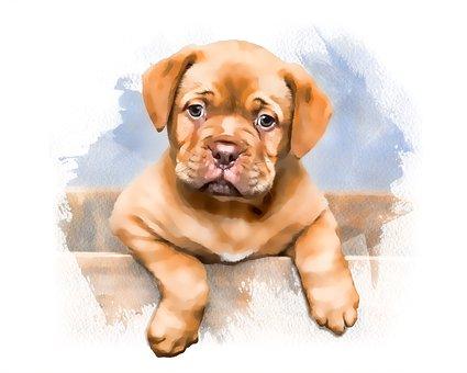 Puppy, Dog, Watercolor, Cute, Cub, Adorable, Young