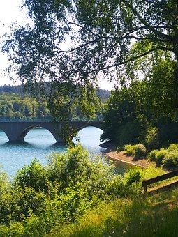 Bridge, Tree, Lake, Dam, Leaves, Foliage