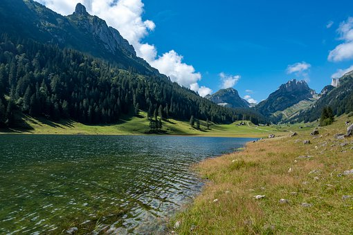 Mountains, Forest, Trees, Lake, Alpine, Hiking
