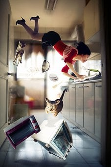Woman, Cats, Oven, Microwave, Kitchen, Gravity