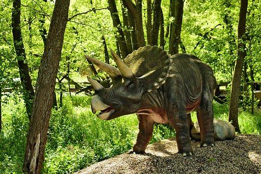 Dinosaur, Dino, Triceratops, Horns, Reptile, Extinct