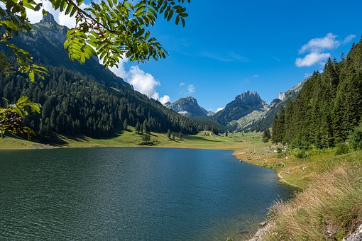 Mountains, Alpine, Lake, Forest, Trees, Fields, Valley
