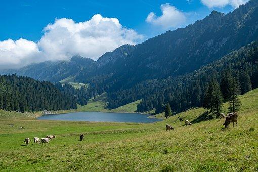 Alpine, Mountains, Lake, Landscape, Nature, Hiking