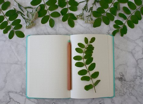Notebook, Registration Book, Book, Book Pages, Romantic