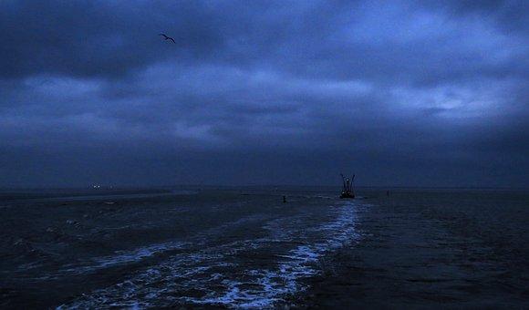 Island, Sea, Boat, Departure, Waves, Bird, Clouds