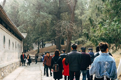 People, Crowd, Visitors, Group, Hill, Buildings, Forest