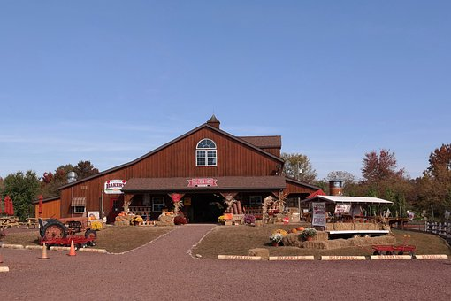 Barn, Farm, Pumpkin, Harvest, Autumn, Hofladen