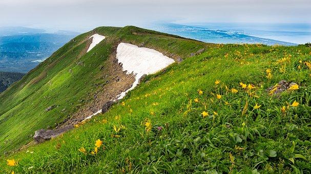 Mountain, Flowers, Japan, Landscape, Mt, Alpine Meadows