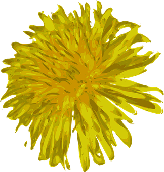 Dandelion, Flower, Beautiful, Wild, Weed