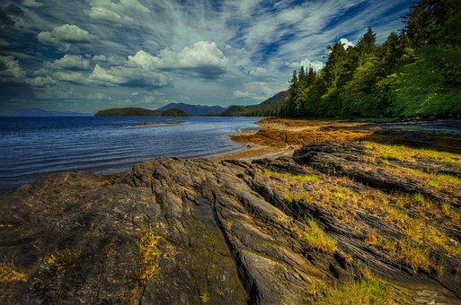 Mountains, Coast, Forest, Ocean, Alaska, Wilderness