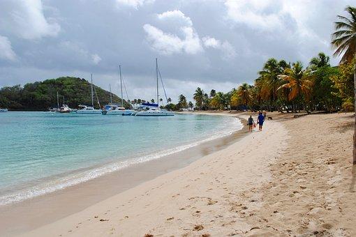 Palm Trees, Sailboats, Harbor, Beach, Coast, Waves