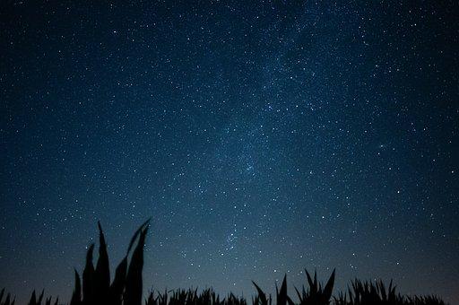 Sky, Stars, Galaxy, Milky Way, Starry Sky, Cornfield