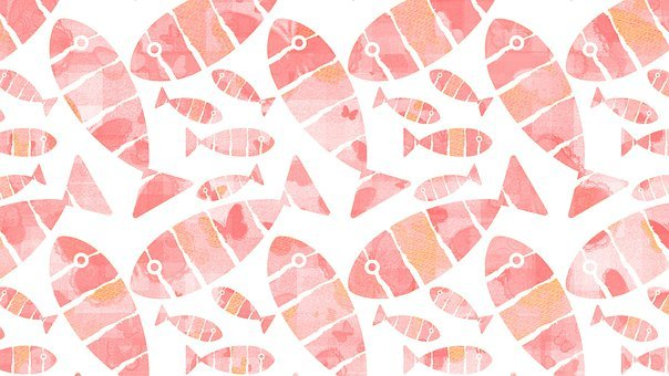 Fish, Fins, Scales, Pattern, Animal, Drawing, Sea