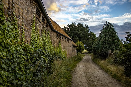 Trail, Building, Wall, Trees, Leaves, Foliage, Village