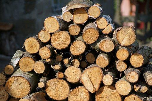 Wood, Wood Structure, Cut Wood, Wood Material, Cut Tree