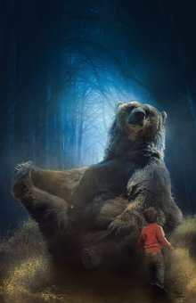 Bear, Boy, Forest, Night, Moonlight, Chance Encounter