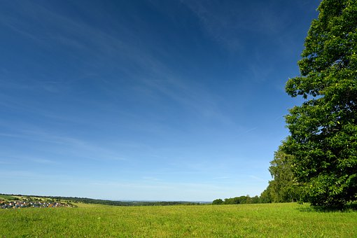 Meadow, Field, Grass, Trees, Sky, Nature, Outlook