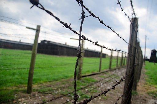 Fence, Holocaust, Barbwire, Crematorium, Majdanek