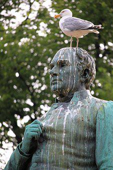 Gull, Statue, Bird Droppings, Degrading, Bird