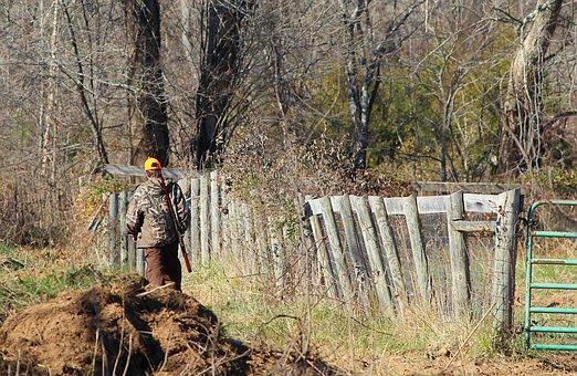 Hunter, Deer Hunting, Rifle, Camouflage, Hunt, Gun