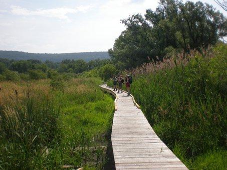Pochuck Creek, Appalachian Trail, New Jersey, Landscape