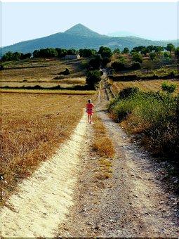 Away, Landscape, Nature, Field, Lane, Grass, Summer
