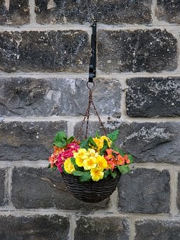 Flowers, Wall, Pot, Hanging, Basket, Spring, Colorful