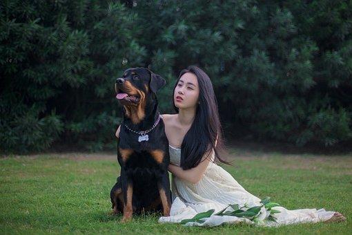 Rottweiler, Dog, Wedding Dresses, Lawn, Lily, Girls