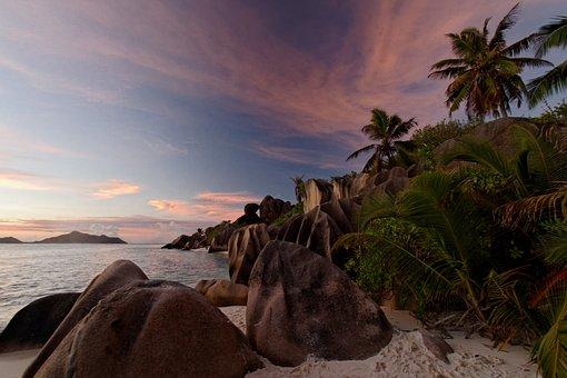 Palm Trees, Ocean, Tropical, Sunset, Sea, Island, Beach